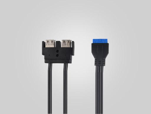 USB3.0  20PIN TO 2AF  OD5.5   BLUE (rectangle)